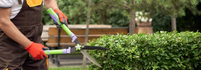 outil de jardinage professionnel