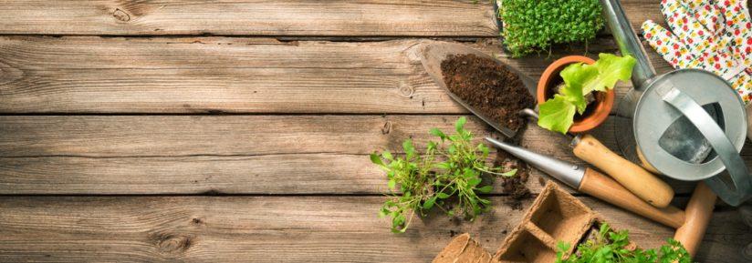 outil de jardinage pas cher