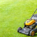prix tondre pelouse