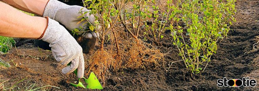 code promo Stootie pour le jardinage